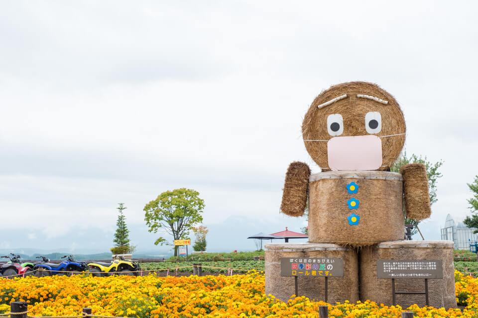 美瑛【四季彩の丘】からJR旭川駅への戻り方【タクシーとJR】